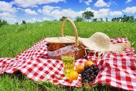 picnic blanket with picnic food on it