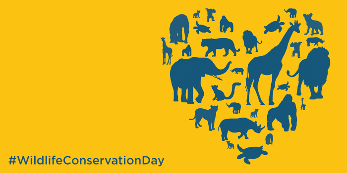 wildlife conservation day