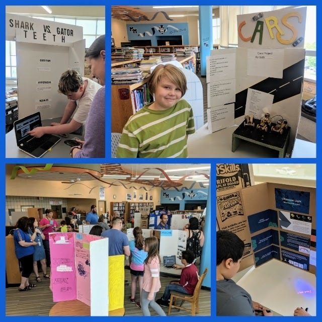 5th Grade Science Fair Collage